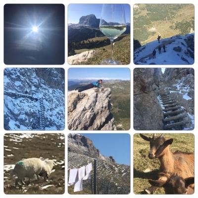Sista dagens tripp upp på 2600 höjdmeter, snö is grus svett sveda värk och otroligt mycket glädje💕 imorgon flyger jag hem så vi ses i nästa vecka