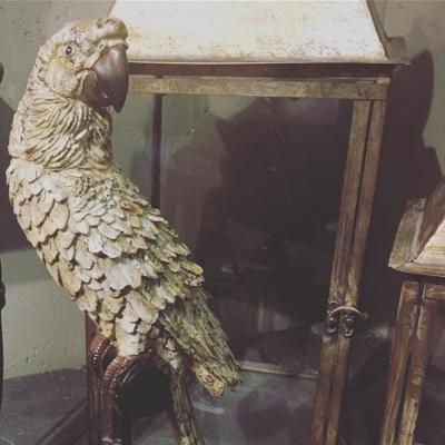 Papegojor papegojor  på Formex ......#butikehlsasgarderob